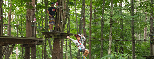 Forest Adventure will open in uenovillage of gunmaprefecture